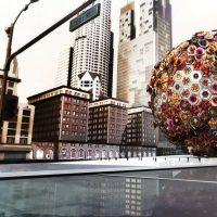 (a) Ball